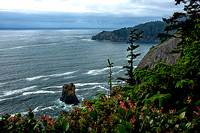 Cape Falcon, Oregon Coast