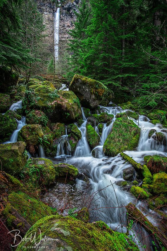 Watson Falls, North Umpqua River, Oregon